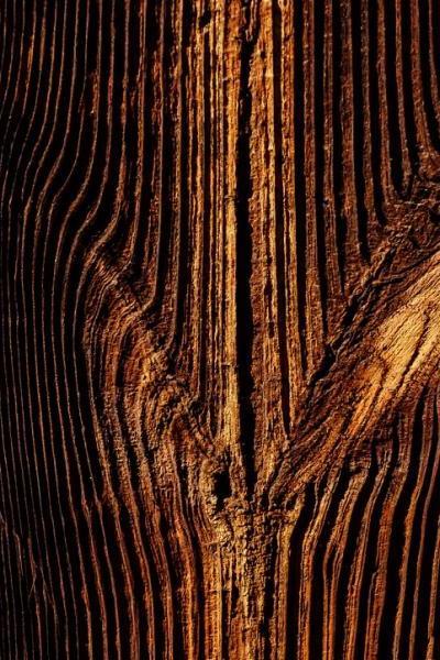 23-natural-wood-photostories